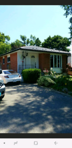 3 bedroom main floor detached bungalow in south Pickering