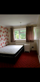 Large double bedroom to let