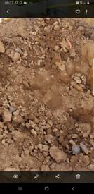 Free soil .
