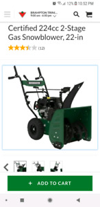 Certified 224cc 2-Stage Gas Snowblower, 22-in