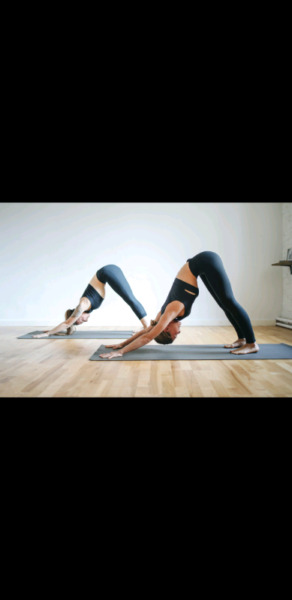 Yoga/ Pilates for home or office