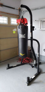 Everlast Stand with Heavy Bag & Speed Bag