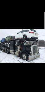 Car carrier peterbilt