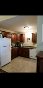 Exlg 2 Bed Apart for rent looking for a Roommate