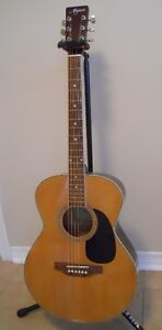 Magnum 6 String Acoustic Kingston Kingston Area image 5