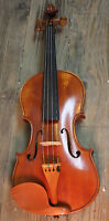 Violin- Full Size
