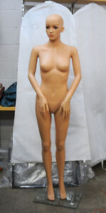 Mannequin - Full Body - Arms and hands in dynamic pose.