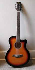 Tiger sunbeam Guitar