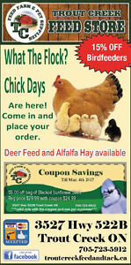 Order your Ready to Lay, Ducks, Turkeys and Meat Birds
