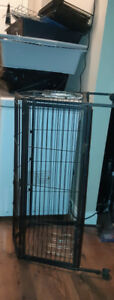CAGE SUPPLIES FOR GUINEA PIGS OR OTHER - FREE