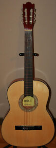 6 String, 12 String, Acoustic/Electric & Classical Guitars
