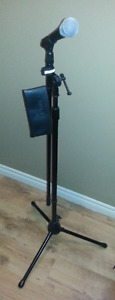 PG48 Sure microphone  carry bag and stand