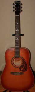 Norman by Godin Acoustic / Electric Guitar With Hard Shell Case