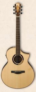 Ibanez Multi-Wood Acoustic-Electric guitar, brand new