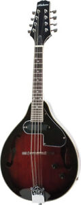 Mandolin with built in electric pickups