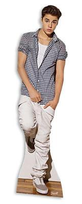 fsteller Kariertes Hemd (Halloween Justin Bieber)