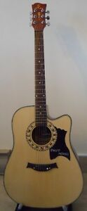 Swift Horse Guitar - Excellent Condition Kingston Kingston Area image 1
