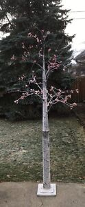 Outdoor winter tree