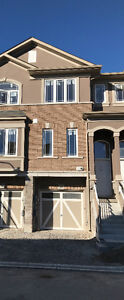 Beautiful never occupied townhouse - 4 BR 3.5 baths