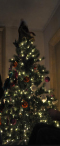 Easy to put together Christmas Tree for sale with built in light