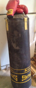 Boxing Punching Bag and Ladies Boxing Gloves