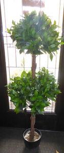 3 fake plants $ 5 - $ 10 Kitchener / Waterloo Kitchener Area image 3