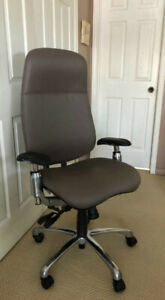 GLOBAL SHADOW Executive Ergonomic Chair
