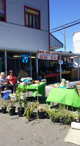 GIANT COMMUNITY GARAGE SALE/FLEA MARKET @ Superette Foods June25