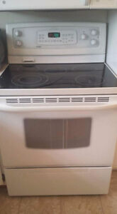 Self clean convection oven