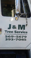 Tree removal and skidsteer services