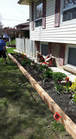 Spring Clean up + Lawn mowing + Garden Care + All Landscaping