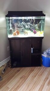 33 gallon and stand