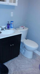 One bedroom available in a two bedroom apartment immediately St. John's Newfoundland image 3