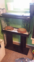 23 gallon tank suited for reptile or snake