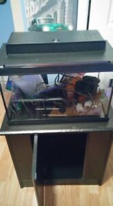 10 Gal. Fish Tank with Storage Cabinet