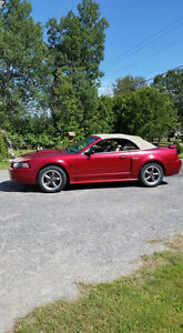 2003 Ford Mustang Convertible