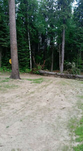 Free fire wood 5 truck loads,