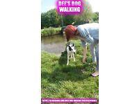 Dees Dog Walking