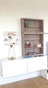 IKEA BESTA stand/storage unit in WHITE high glosss with Shelves.