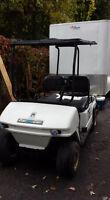 golf cart ,gas 800