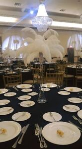 {Ostrich Feather Centerpieces for Rent}