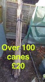 Over 100 assorted canes