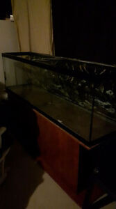 Aquarium 120 gallons + meuble