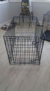 Dog crate in EUC.
