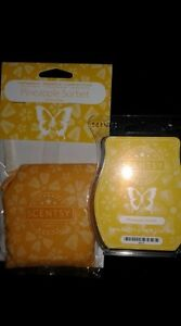 Scentsy's Pineapple Sorbet - 1 scent pak & 1 full bar bundle