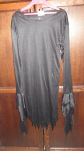 Witch dress in size 10/12 Kingston Kingston Area image 2