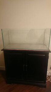 rimless tank 22 gallon, comes with stand