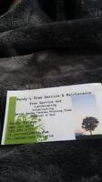 Randy's Tree Service & Maintenance