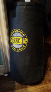 Small Everlast Punching Bag