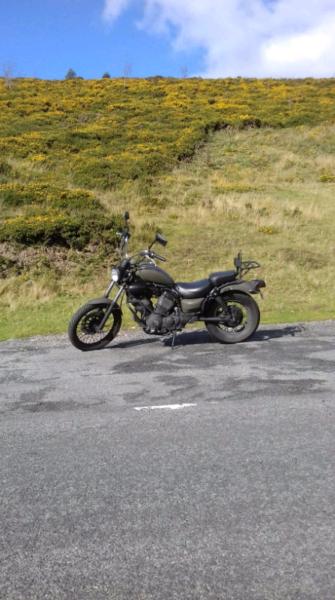 Yamaha Virago xv 535  for sale  Bagillt, Flintshire
